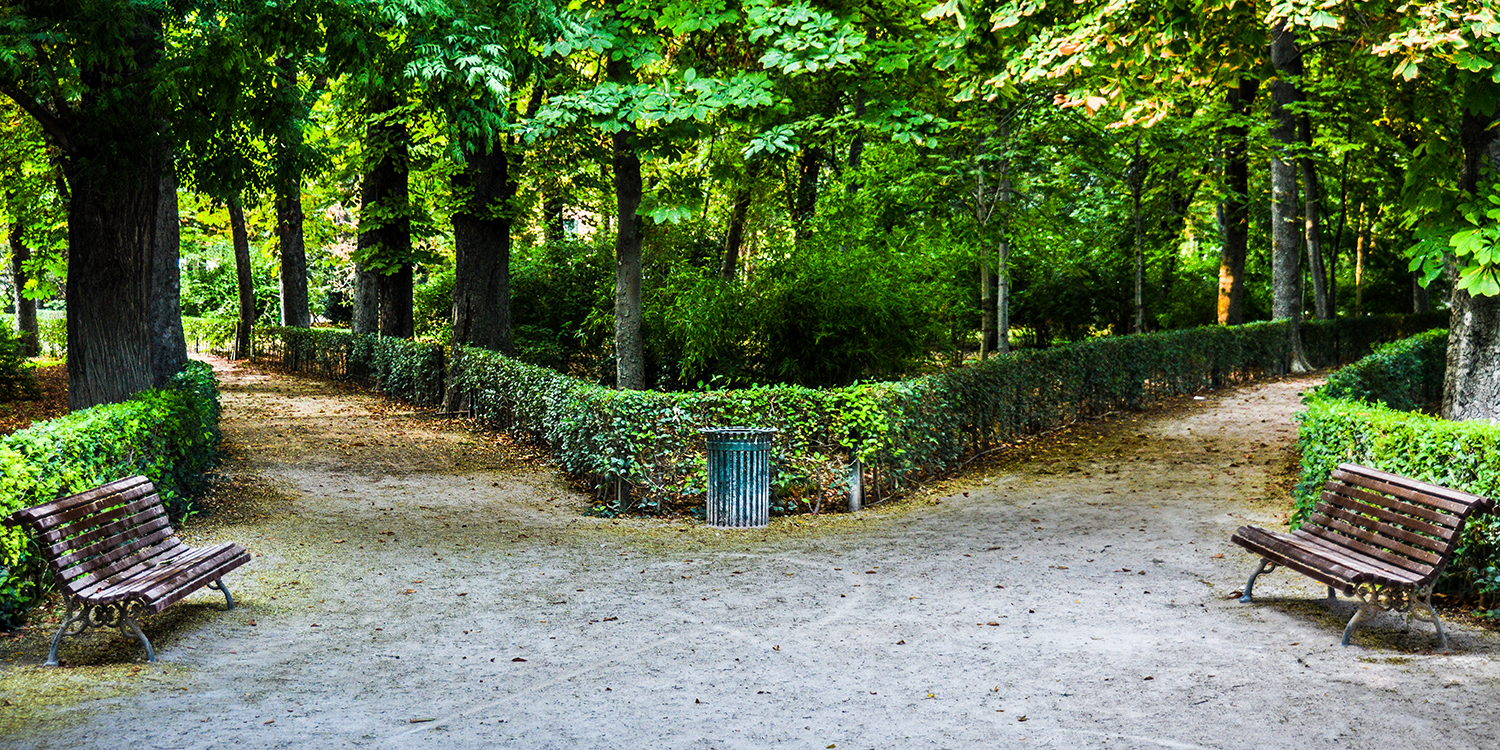 Divergent paths in a park, representing the two approaches for people who need divorce help: collaborative and high conflict